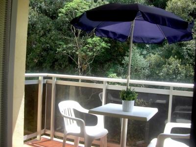 appartement location de vacances AMELIE LES BAINS PALALDA